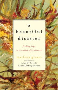 A Beautiful Disaster book cover